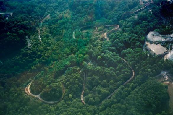 Un grand huit est caché dans cette nature luxuriante, sauras-tu le retrouver ? (photo : JamminJ - Theme Park Review)