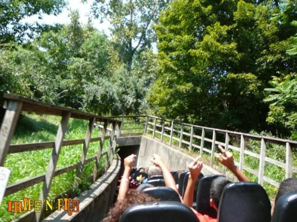 De la nature partout, de la vitesse également, et même un tunnel. Serions-nous au paradis des wooden coasters ? (photo : Trips-n-Pics)